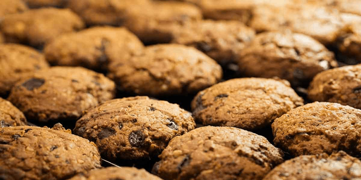 Privacy ed Informativa Cookies